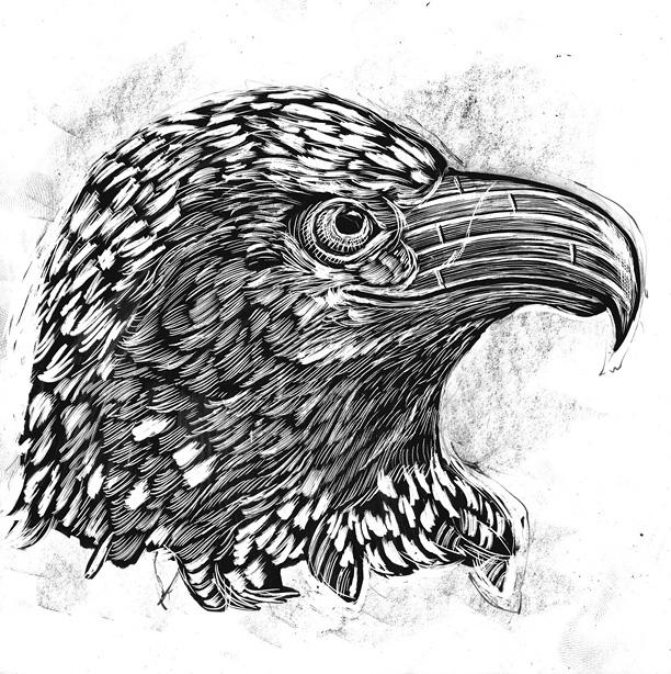 "Dan Grzeca's ""Reconstructed North American Fauna Portfolio Set"""